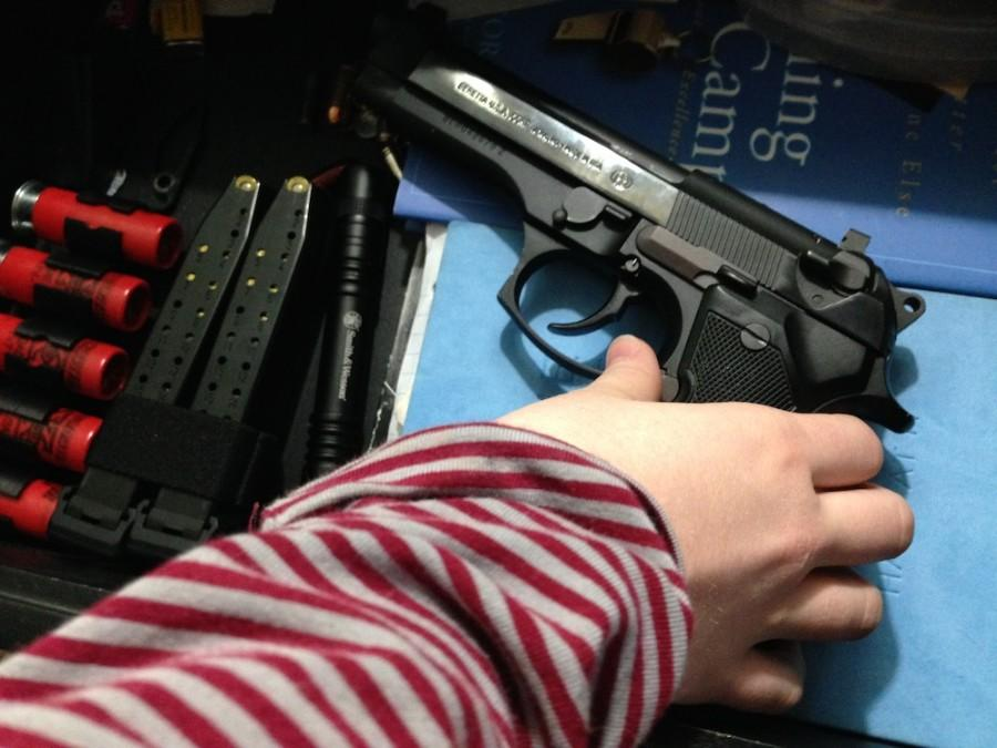 Gun Regulations: One Student's Plea