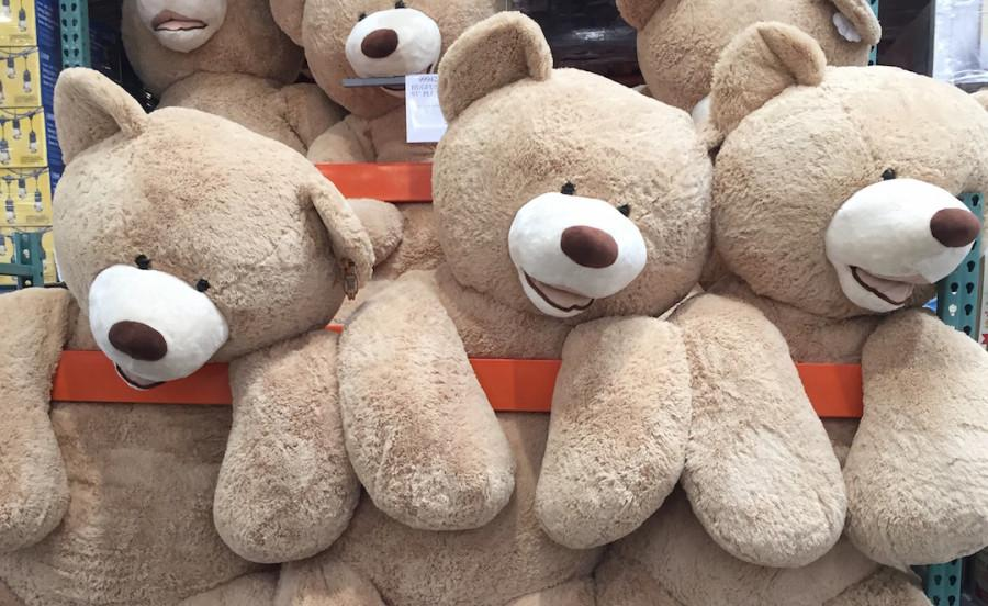 Bring in your teddy bears to Mrs. Gentry in the front office for a great cause.