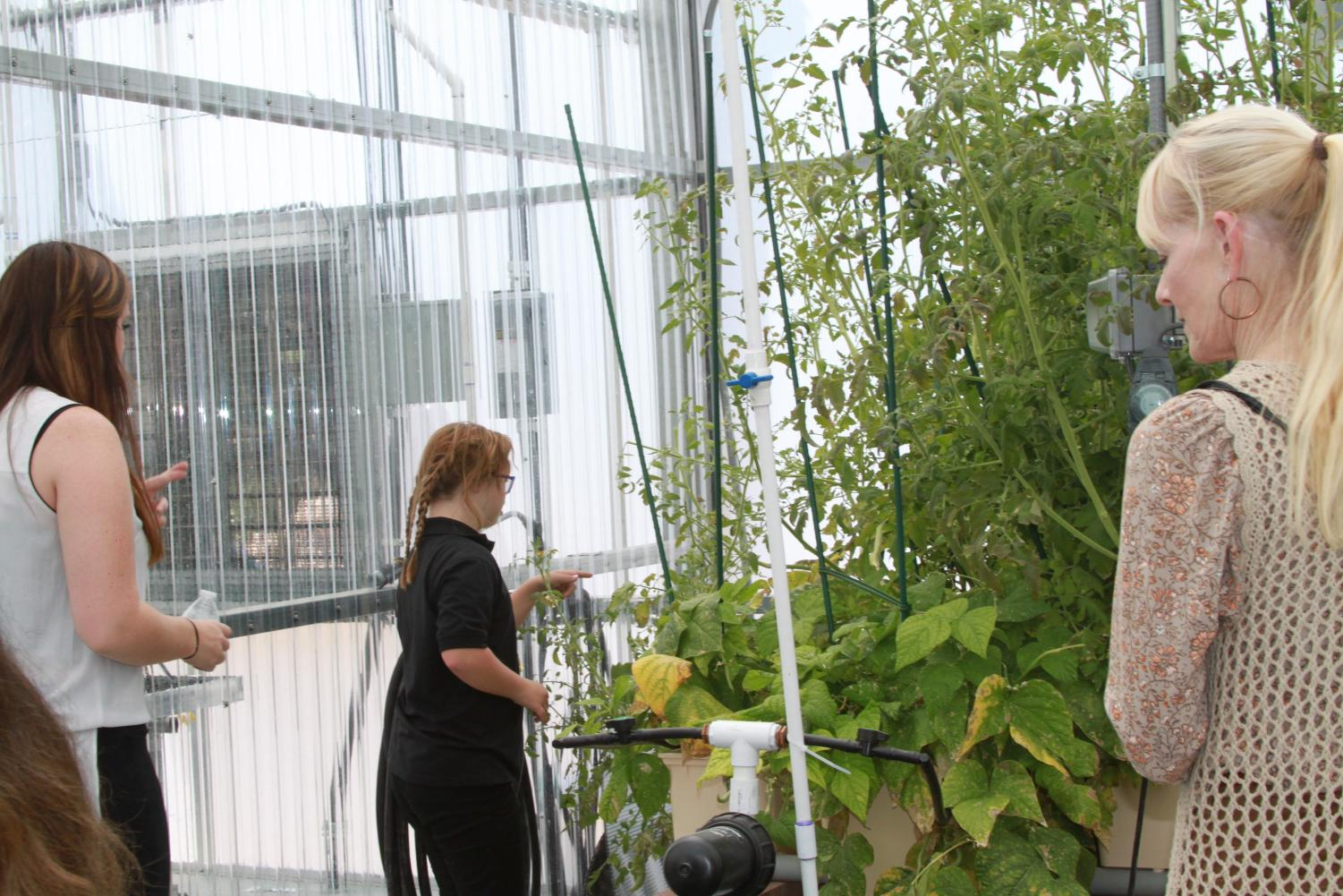 Mark 10:14 student, Antalya, examines plants in the new greenhouse. Mark 10:14 classes will utilize the greenhouse as a new teaching tool for the students.
