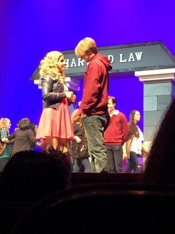 """Omigod you guys"" ""Legally Blonde"" is ""What you want"""