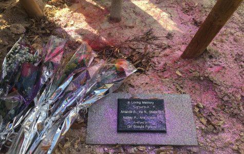 Girl Scouts memorialize Ashley Perrone