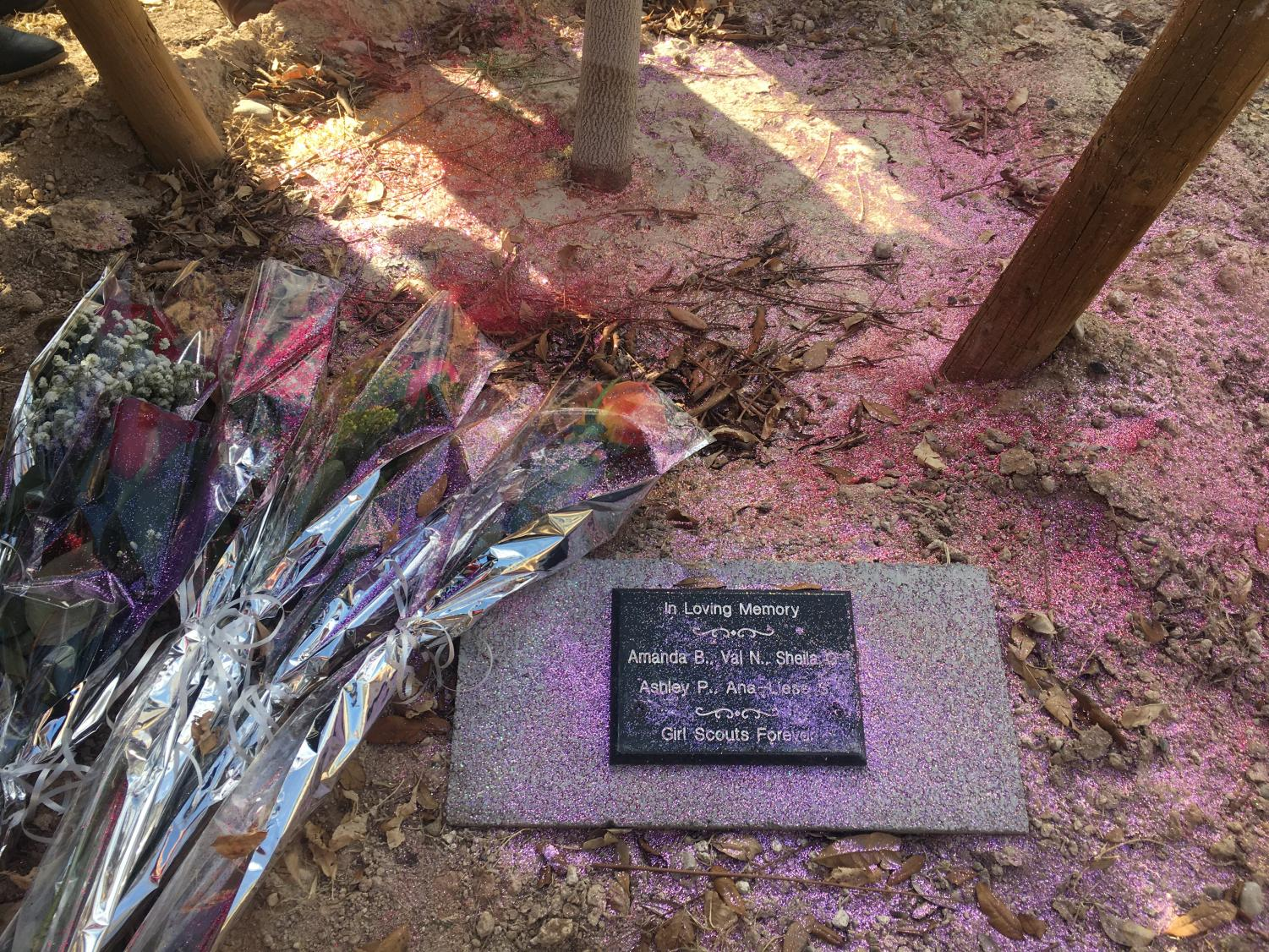 Rainbow glitter is sprinkled around the base of the tree to symbolize the color Ashley brought to the lives of many people.