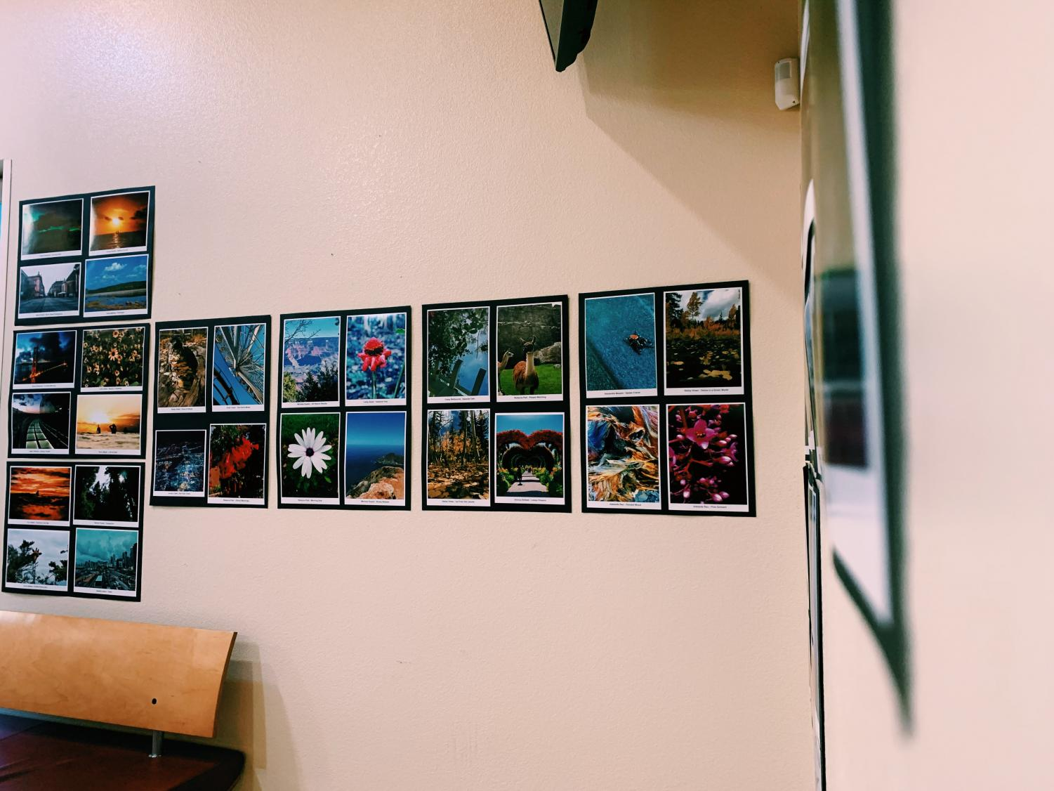 Photos that were submitted and displayed in the CPAC for all students and teachers to see!