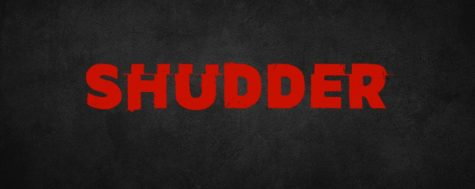Shudder began with beta testing in 2015, and has now been up and running as a platform for almost five years.