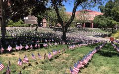 2,996 American flags were planted in the ampitheatre to represent Americas resilience.